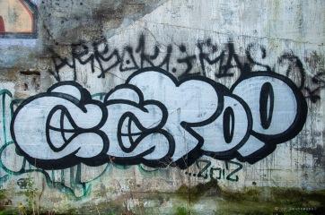 DSC_5232
